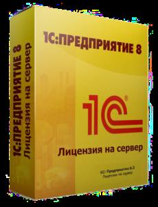 установка 1с в Москве
